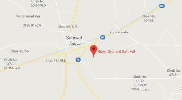 Royal Orchard Multan, Sahiwal and Sargodha - Location Map