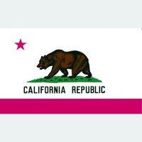 California Flag for Sale