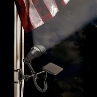 Liberty Flagpole Light