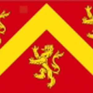 Anglesey flag 5x3ft