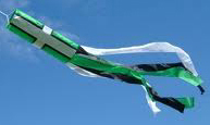 Devon Windsock tubetails 60cm