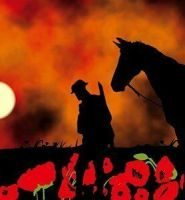 Warhorse lest we forget Remembrance flag 5ft x 3ft