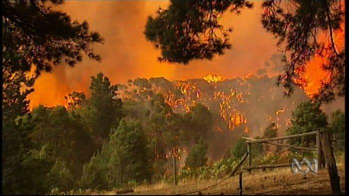 Victorian Bushfire Loss Assessment Flagstaff Consulting