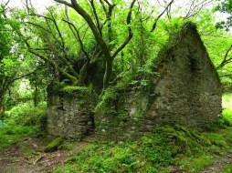 e sentier pédestre Kerry Way entre Sneem et Kenmare (Irlande)