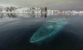 Bateau (Antarctique)
