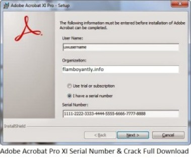 adobe acrobat 8 professional  full version with crack