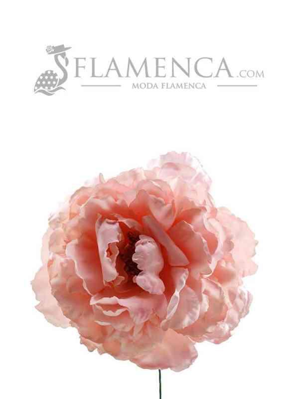 FLOR DE FLAMENCA ROSA PALO