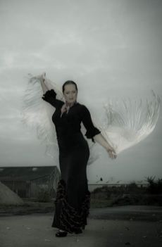 Flamenco Flavie Cardona, Oldenburg, Foto: C. Jongebloed
