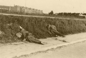 Dutch casualties
