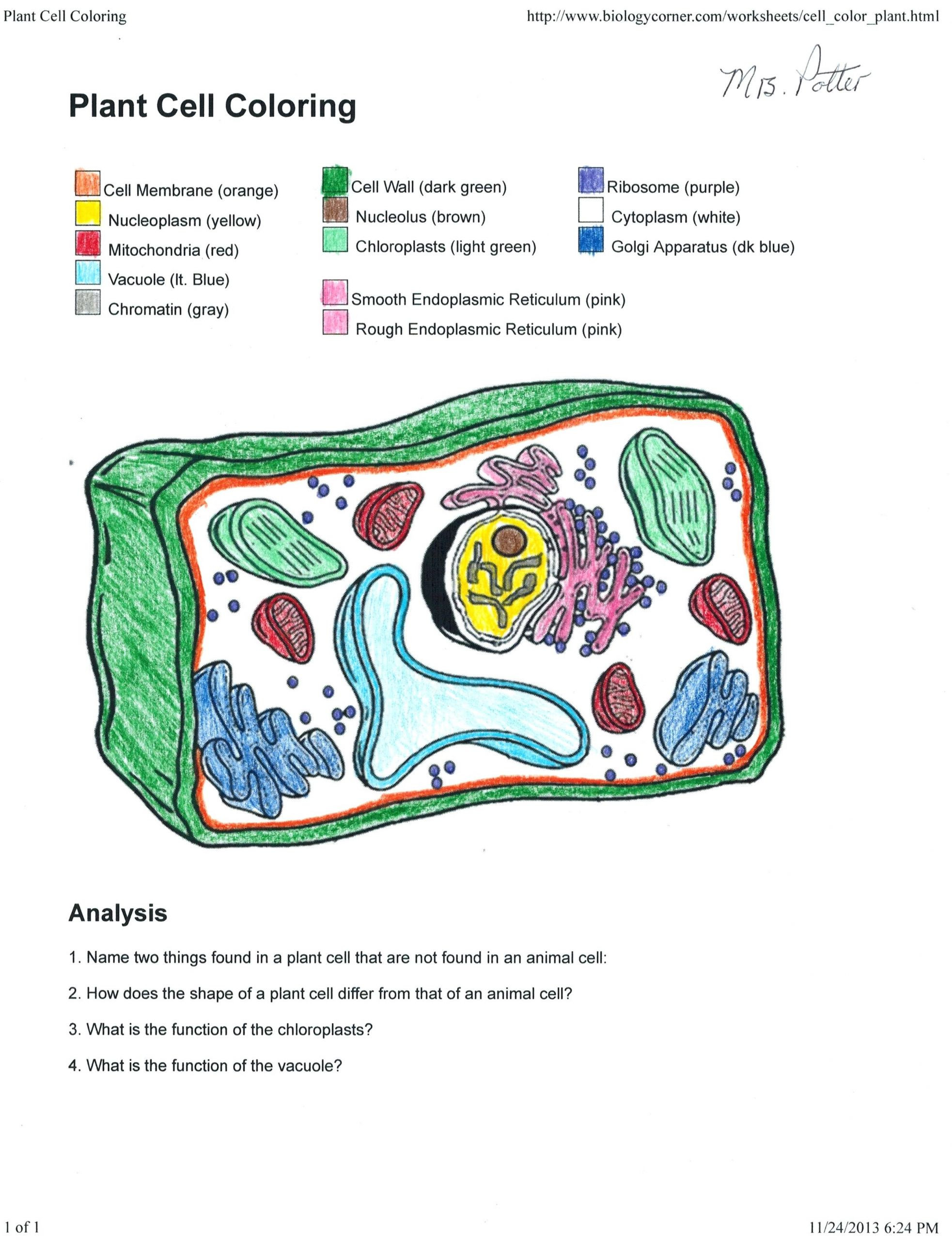 Cell Coloring Sheet Cool Cell Membrane Coloring Worksheet