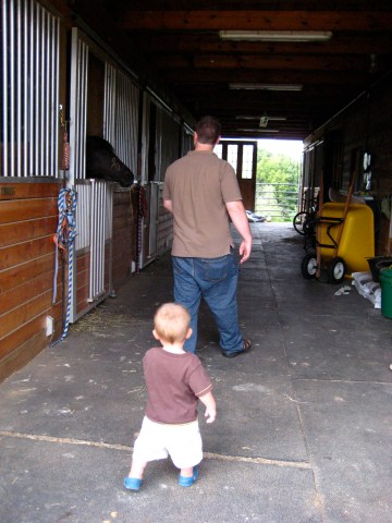 Sammy following Andrew into the barn