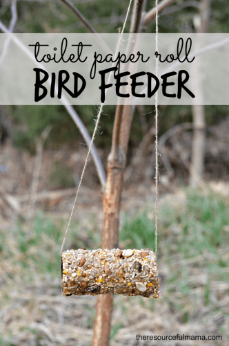 9 ingenius uses for toilet paper tubes flanders family for Toilet paper tube bird feeder