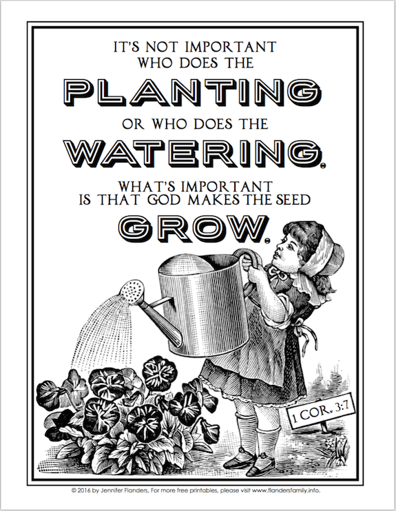 God Makes Seeds Grow Coloring Page