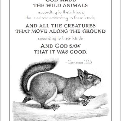 Happy Squirrel Appreciation Day (Free Coloring Page)