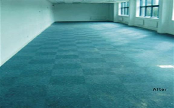 Professional Carpet & Upholstery Cleaning Services in Auckland