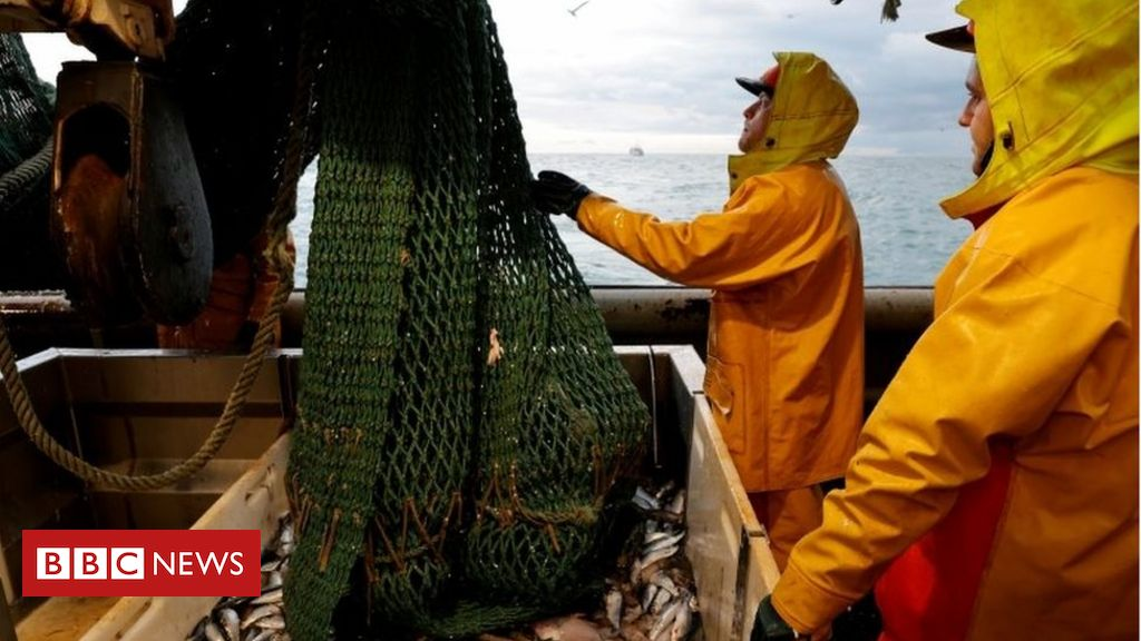 Brexit: Anger over government's failure to get Norway fishing deal