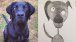 Man's 'crap' pet portraits elevate hundreds for charity