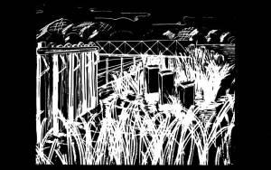 1973-swamp_neg-film-altered-marker_use_2