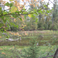 Overlook in Owen Sowerwine Natural Area