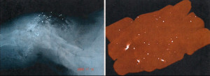 Left, deer neck shot with lead bullet. Right, MRI of random packaged venison with lead fragments. Photos courtesy of Craighead Beringia South.