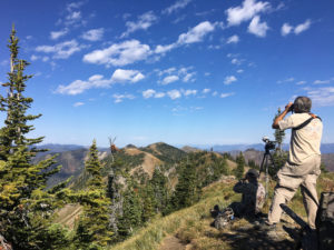 Looking for incoming raptors at the Jewel Basin Hawk Watch site - Photo Credit: Jake Bramante