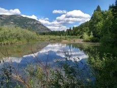 Bad Rock Canyon wetlands