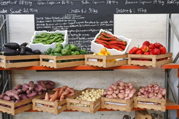 Fratelli Fresh Sydney market