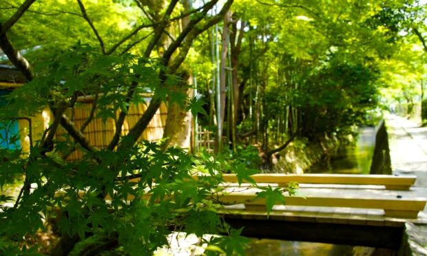Kyoto_91