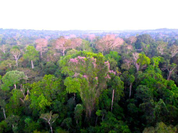 Cristalino_Lodge_Amazônia_16