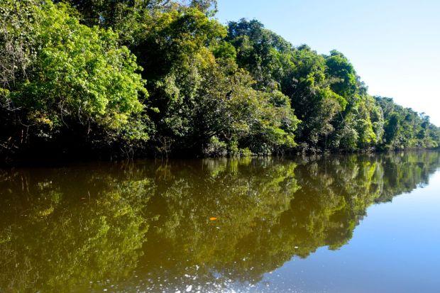 Cristalino_Lodge_Amazônia_50