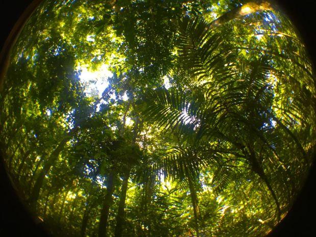 Cristalino_Lodge_Amazônia_67