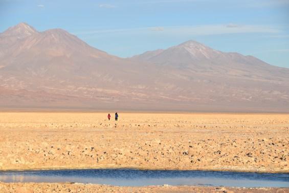 Tierra_Atacama_19