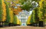 Jardin-des-Tuileries-02