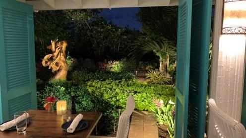 Blanchard's-anguilla-