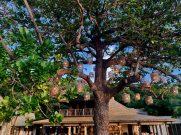 six-senses-zil-pasyon-felicite-island-seychelles-20