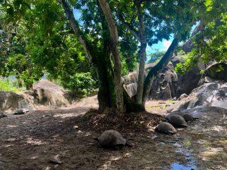 six-senses-zil-pasyon-felicite-island-seychelles-27