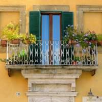 Farnese - Windows