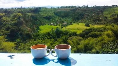 Drinking Colombian coffee on a coffee farm