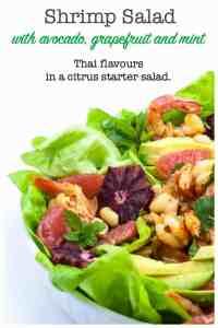 Shrimp Salad with Grapefruit and Mint pin