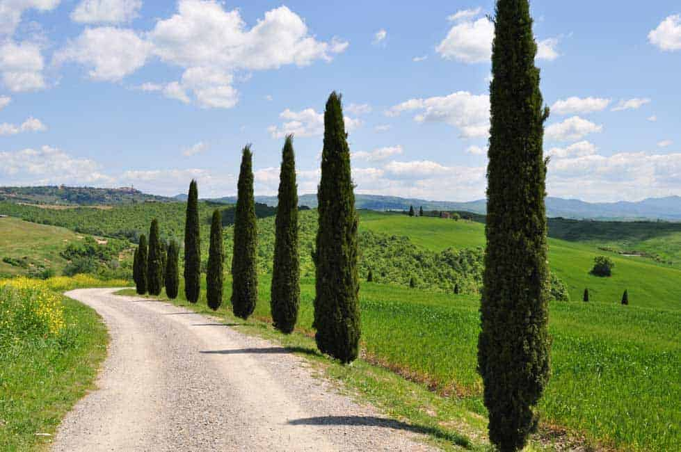 Tips for Driving in Italy from Flavour and Savour