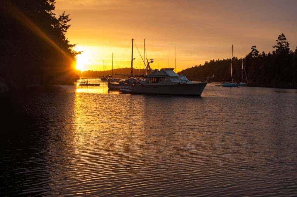 Sunset at Wallace Island. Citrus Chardonnay Glazed Wild Salmon