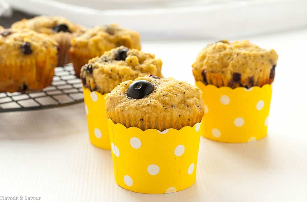 These Paleo Blueberry Lemon Poppy Seed Muffins are made with almond flour, honey, and fresh blueberries. They're light and lemony!