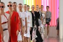 Preen by Thornton Bregazzi SS15 (Christopher James, British Fashion Council) 4