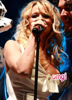 Pamela Anderson let her whole nipple slip out on while on stage at the Gridlock New Year's Eve party in 2010