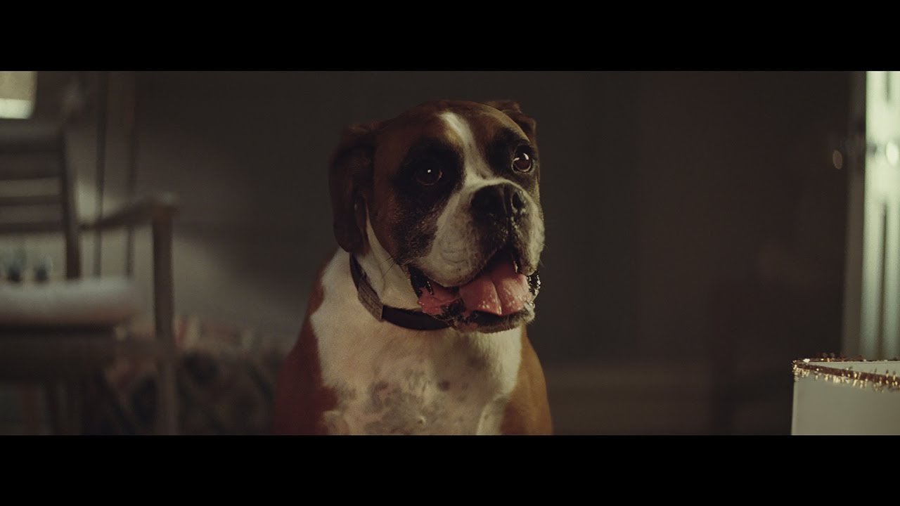 The John Lewis Christmas advert is here - FLAVOURMAG