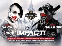 wrestling mediacon