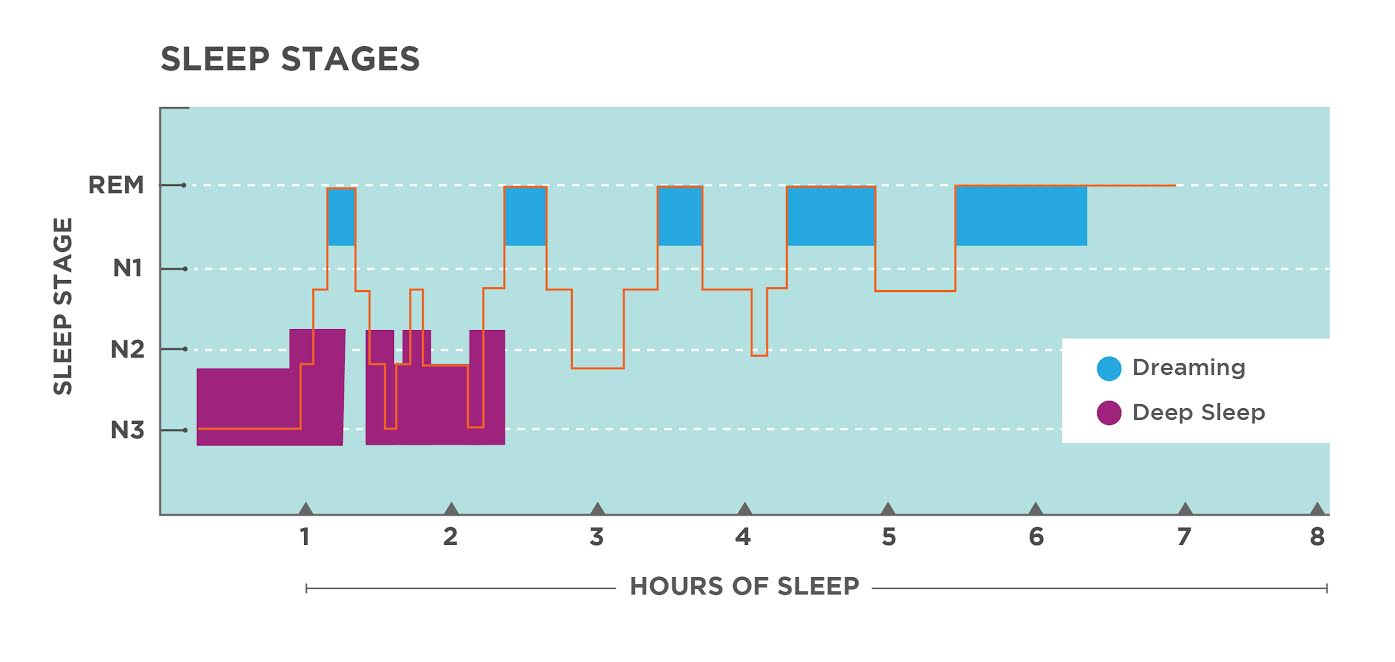 Sleep - Maximize the most important activity of your life  | FLAWD