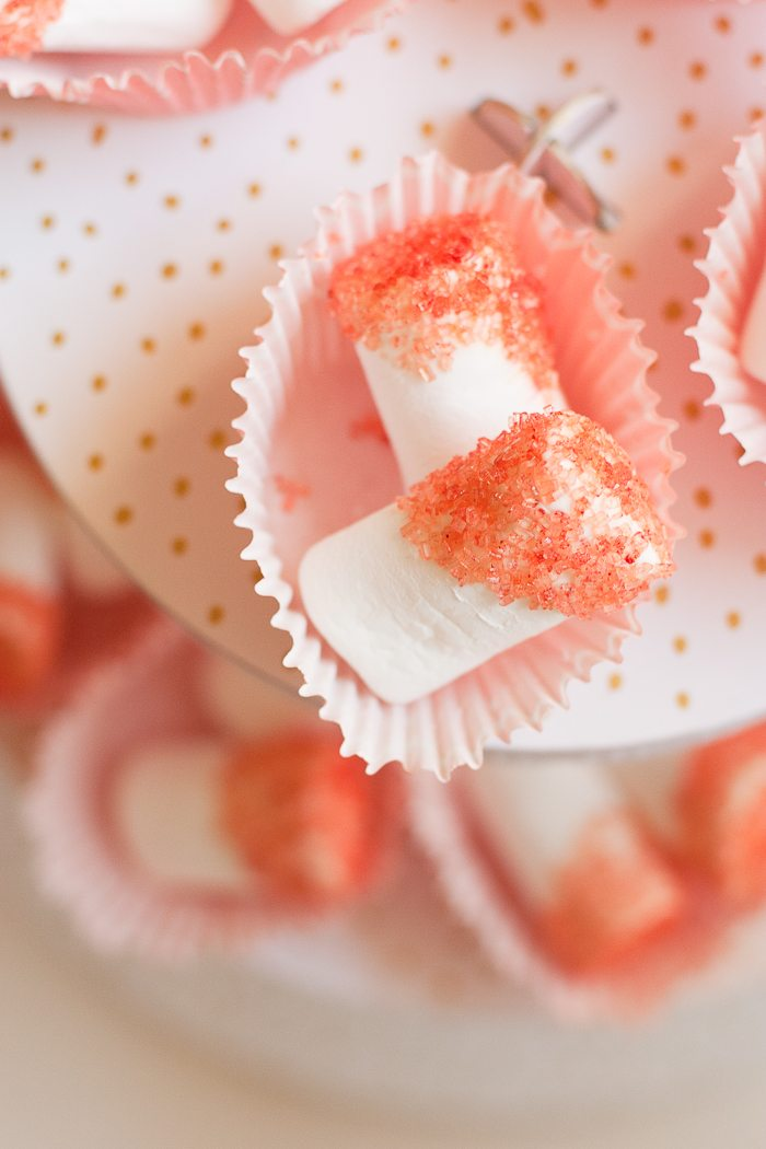 sugar dipped marshmallow-9737