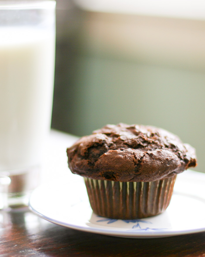 Chocolate muffins - yum!