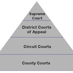 Judicial Branch Court System Diagram Wiring Diagrams For Trailer Lights Florida Courts Appellate
